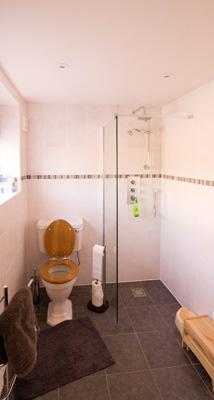 Higher Lanner Farm Shower Room